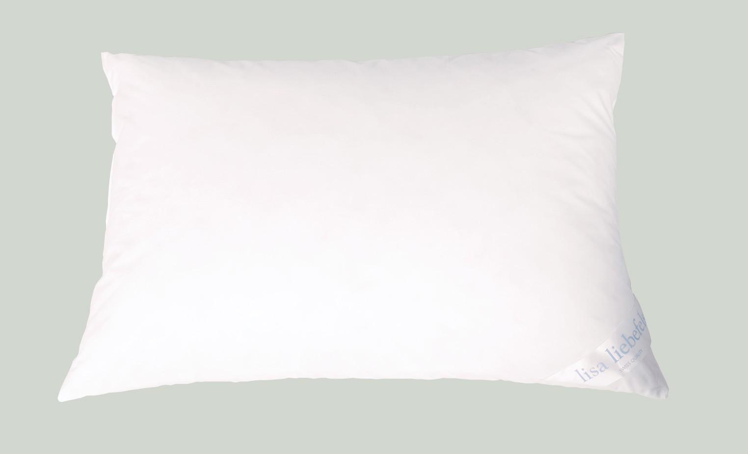 daunen komfort kissen kologische daunen swiss made. Black Bedroom Furniture Sets. Home Design Ideas