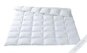 SINCLAIR Duvet - angenehm leicht, für Schläfer mit geringerem Wärmebedürfnis